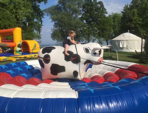 Kids Rodeo Bull